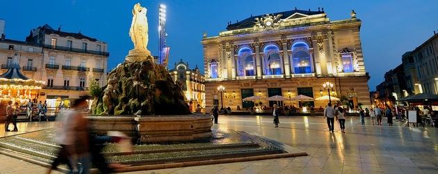 optimiser le rangement de vos biens à Montpellier