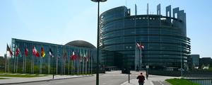 Strasbourg%20affaires medium