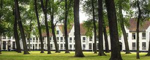 Bruges famille medium