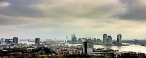 Rotterdam  business medium