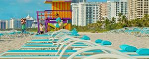 Miami famille medium